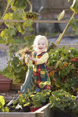 Young child on allotment — Stock Photo