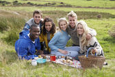 Young adults on country picnic — Stock Photo