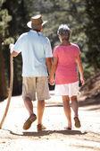 Senior koppel op land lopen — Stockfoto