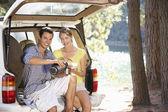 Mladý pár na zemi piknik — Stock fotografie