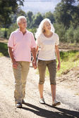 Senior couple on country walk — Stok fotoğraf