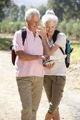 Senior couple reading map on country walk — Stock Photo