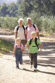 Senior couple and grandchildren on country walk — Stock Photo