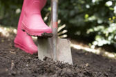 Woman digging in garden — Stock Photo