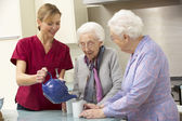 Senior women at home with carer — Stock Photo