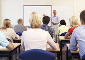 Senior-tutor lehre klasse — Stockfoto