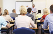 Senior tutor teaching class — Stock Photo