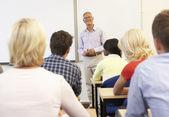 Senior handledare undervisning klass — Stockfoto