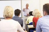 старший преподаватель учебных класса — Стоковое фото
