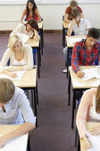 Students sitting exam — Stock Photo