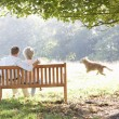 Senior couple outdoors with dog - Stock Photo