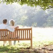 Senior couple sitting outdoors — Stockfoto #11890096