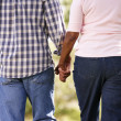 Senior couple walking in park — Stock Photo