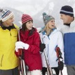 Group Of Middle Aged Couples On Ski Holiday In Mountains — Stock Photo #11891752