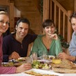 Group Of Friends Enjoying Meal In Alpine Chalet Together — Stock Photo #11892053