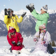 Stock Photo: Teenage Family Having Snow Fight In Mountains