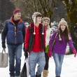 Teenage Family Carrying Shopping Walking Along Snowy Street — Stock Photo #11893473