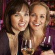 Two Women Enjoying Drink Together In Bar - Stock Photo
