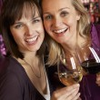 Two Women Enjoying Drink Together In Bar — Stock Photo #11893580