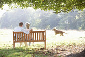 Senior couple outdoors with dog — Stock Photo