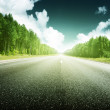 Road in forest — Stock Photo #12160418