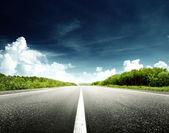 Straße im wald — Stockfoto