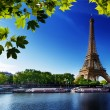 Seine in Paris with Eiffel tower — Stock Photo #12272573