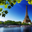 Постер, плакат: Seine in Paris with Eiffel tower