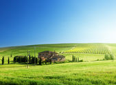 Tuscany landscape with typical farm house — Stock Photo