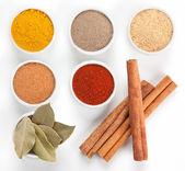 Olika kryddor i vita skålar isolerad på vit bakgrund. — Stockfoto