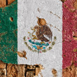 Grunge Flag Of Mexico — Stock Photo #12185816