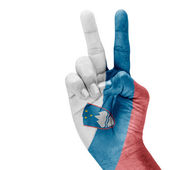 Slovenia Flag On Hand. — Stock Photo