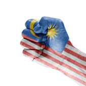 Malaysia Flag On Hand — Stock Photo