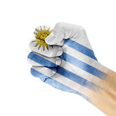Uruguay Flag On Hand. — Stock Photo