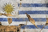 Grunge Flag Of Uruguay. — Stock Photo