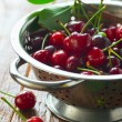 Fresh cherries in a colander — Stock Photo