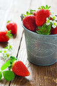 Strawberries in a bucket — Stock Photo