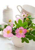 Flowers of wild rose in the cup — Stock Photo