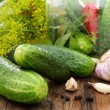 Cucumbers, herbs and spices for pickling. — Zdjęcie stockowe