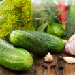 Cucumbers, herbs and spices for pickling. — Стоковое фото