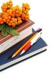 Książki, ołówki i kiść jarzębiny. — Zdjęcie stockowe