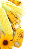 Flower,grilled corn and fresh cobs with green leaves — Stock Photo