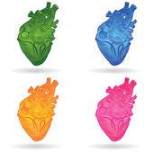 Vector button or icon of a human heart — Stock Vector