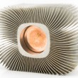 Old aluminum cpu cooler heat sink — Stock Photo