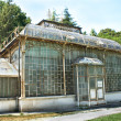 Old Greenhouse in Belgrade - botanical garden - Stock Photo