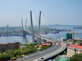 Guyed bridge in the Vladivostok over the Golden Horn bay — Stock Photo