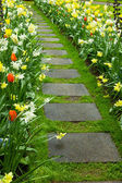 Stone walk way winding in garden — Stock Photo