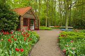 Keukenhof garden, Holland — Stock Photo