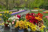 Flower shop in Keukenhof garden — Stock Photo