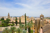 Skyline of Cordoba, Spain — Stock Photo